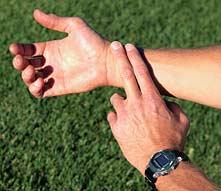 Wrist pulse.png