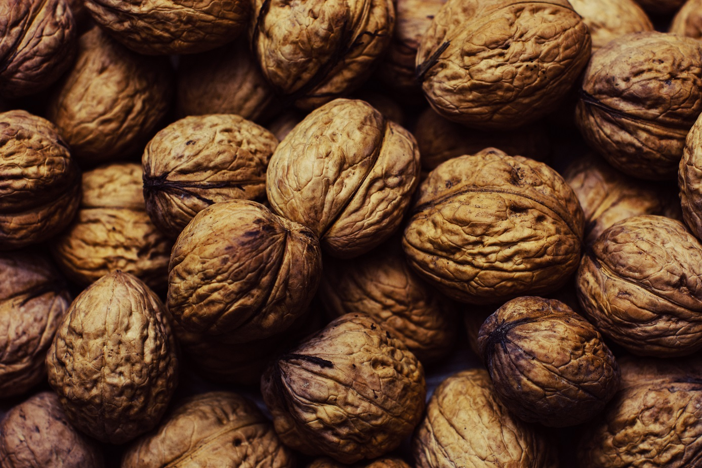 walnuts small.jpg
